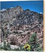 Slide Rock Canyon Wood Print