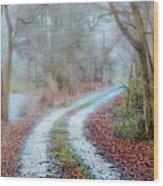 Slippery Travels Wood Print
