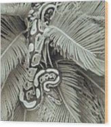 Slithering Wood Print
