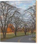 Sloan Park Sunset Wood Print