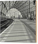 Sloterdijk Station In Amsterdam Wood Print