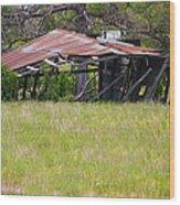 Austin Texas Slow Collapse Wood Print