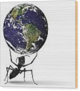 Small Ant Lifting Heavy Blue Earth Wood Print