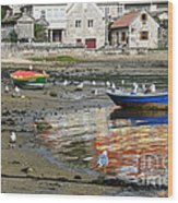 Small Boats And Seagulls In Galicia Wood Print