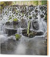 Small Cascade In Marlay Park Wood Print