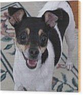 Small Dog Big Smile Wood Print