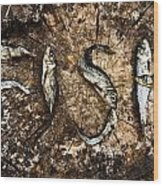 Small Dried Fishes Forming The Word Fish Wood Print
