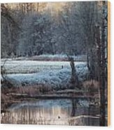 Small Duck Frosty Morning Wood Print