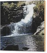 Small Falls Wood Print by Edward Hamilton