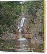 Small Falls Wood Print