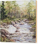 Small Falls In The Forest Wood Print