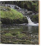 Small Falls On West Beaver Creek Wood Print