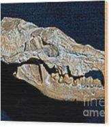 Small Hyena Dog Wood Print