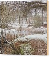 Small Lake In The Snow Wood Print