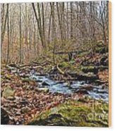 Small Pennsylvania Creek In Autumn Wood Print