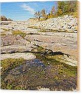 Small Pond Devonian Fossil Gorge Wood Print