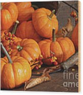 Small Pumpkins With Wood Bucket  Wood Print by Sandra Cunningham