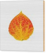 Small Red And Yellow Aspen Leaf 1 - Print Version Wood Print