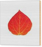 Small Red Aspen Leaf 1 - Print Version Wood Print