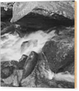 Small Stream Smoky Mountains Bw Wood Print