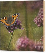 Small Tortoiseshell Butterfly Wood Print