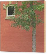 Small Town Color Wood Print