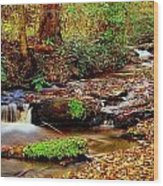 Small Waterfall And Stream 2 Wood Print