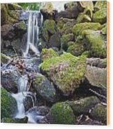 Small Waterfall In Marlay Park Dublin Wood Print