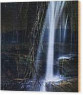 Small Waterfall Wood Print