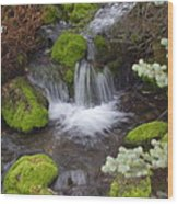 Small Waterfalls Wood Print by Yvette Pichette