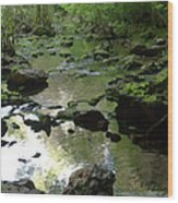 Smallin Creek Wood Print
