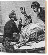 Smallpox Vaccine, 1883 Wood Print