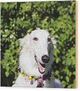 Smiling Borzoi Dog Wood Print by Christian Lagereek