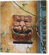 Smiling Cat Mail Box Wood Print