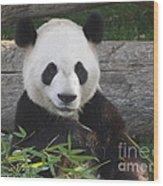 Smiling Giant Panda Wood Print