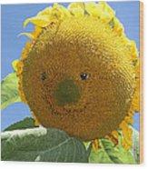 Smiling Sunflower Wood Print