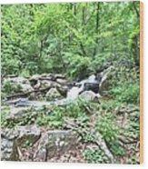 Smith Creek Downstream Of Anna Ruby Falls - 2 Wood Print