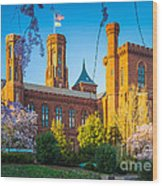 Smithsonian Castle Wood Print by Inge Johnsson