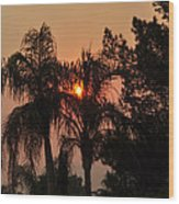 Smoke Covered Sky Sunset Thru The Palm Trees Wood Print
