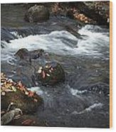Smokey Mountain Stream In Autumn No.2 Wood Print