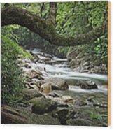 Smokey Mountain Stream. No 547 Wood Print