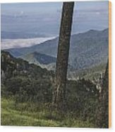 Smokey Mountain View Wood Print by John McGraw