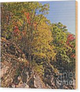 Smoky Mountain Autumn Wood Print