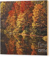 Smoky Mountain Colors - 235 Wood Print