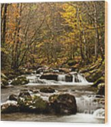 Smoky Mountain Gold II Wood Print
