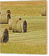 Smoky Mountain Hay Wood Print by Frozen in Time Fine Art Photography