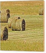 Smoky Mountain Hay Wood Print