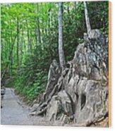 Smoky Mountain Hike Wood Print