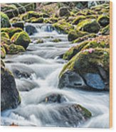 Smoky Mountain Rapids Wood Print by Victor Culpepper