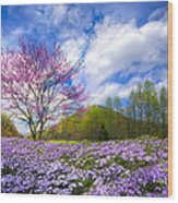 Smoky Mountain Spring Wood Print